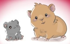 Hamster and guinea pig friends by Marmatoad