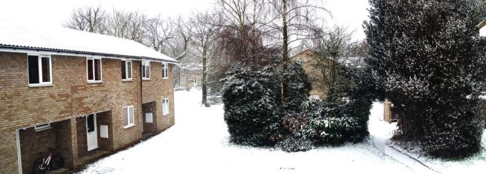 Snow in Bishopden by Plim91