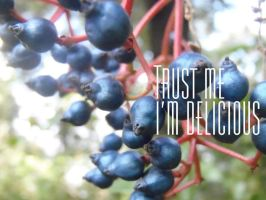 Trust me I'm delicious by PKLdesigner