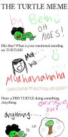 Completed Turtle Meme by bethrainbow