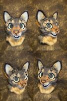 Tabby Cat Partial Head by temperance