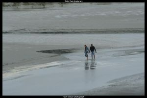 Tidal Plain Explorers by HerrDrayer