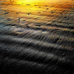 Mossyard: low sun + cold cold wind by Coigach