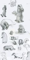 Sketchdump - Badgers by bazjra