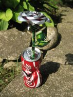 Coke Can Rose - 'Torn' by Christine-Eige