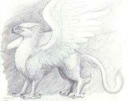 gryphon sketch by missmonster