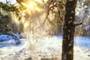 frost and sun wonderful day by 3oloto