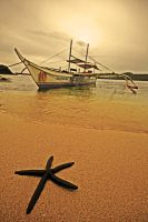 boat and starfish by worldpitou