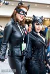 The Catwomen by Sheik19
