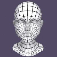 Head Mesh by apthanicest