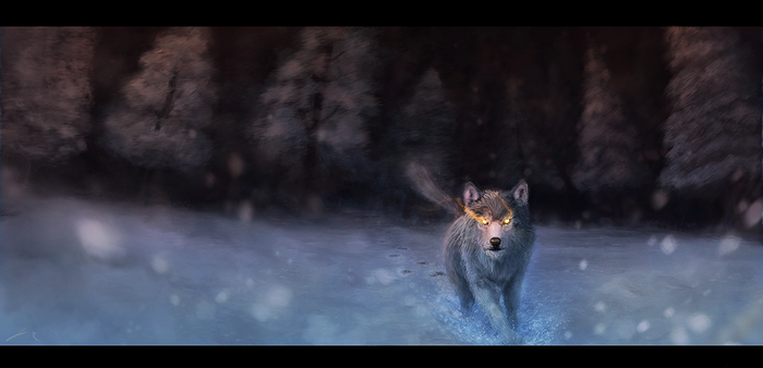 Wolf In The Snow By J R 2017 by raphx2000