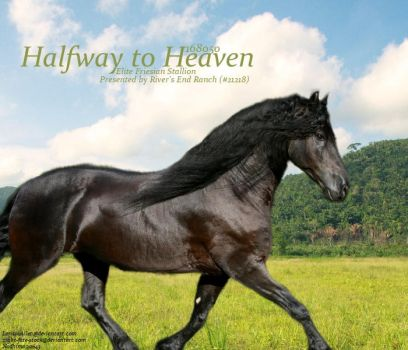 Halfway to Heaven by Cowgirl90