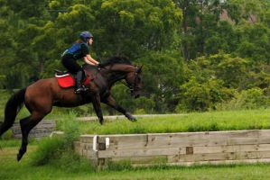 Remi Cross Country Stock 14 by iEvent