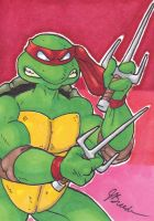 Sketch Card #112 - Raphael V3 by JasonRocket