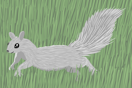 a gray squirrel running by Potoo-Foolery