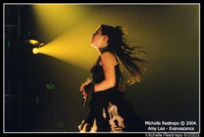 Amy Lee - Evanescence by Micheller335