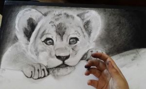 lion cub-----WIP----- by FireLioness