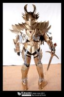 Makai knight by Shoko-Cosplay