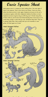 Oasis Ref sheet by Wolfvids