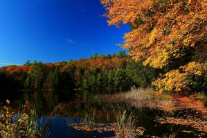 Autumn Lake 2 by Celem