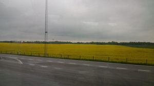 Yellow Pool - A view of the countryside by Patrik356b