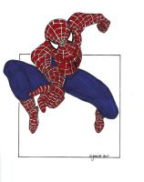 Spiderman Lineart III Coloured by jeminabox