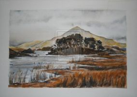 Derryclare Lough, Connemara by SuzanneHole