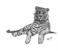 Placid Tiger by The-Redfish