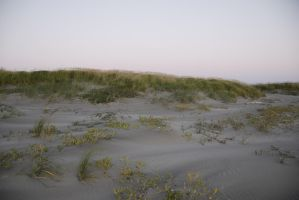 Sand Dunes at Sunset by MogieG123