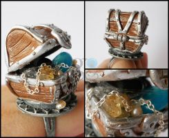 Treasures chest ring by GemDeDude