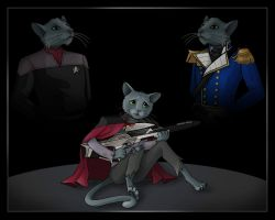 catstar  -  commission by nightwing1975