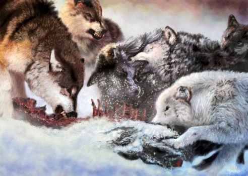 Wolves Feasting by oomu
