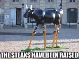 The Steaks have been raised by TheFunnyAmerican