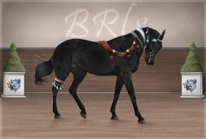 BRlS Thor ZS0027 by BRls-love-is-MY-Live