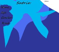 Reff Sheet for Satrie by Snowflame132