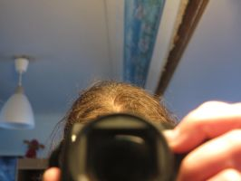 tiny Ice crystals in my hair by CaringheartTTR