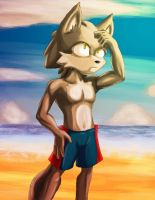Logart at the beach by YeyeiAlba