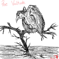 The Vulture by TigaLioness