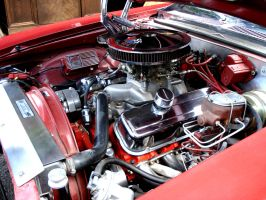 V8 engine of 1973 red Chevy Nova by chevynovagirl