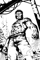 After Battle Wolverine Inks by Blackmoonrose13