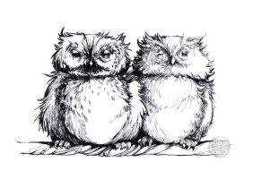 Two Owls by soonumb