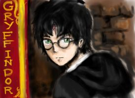Harry Potter - 15 years old by aliceshadowknight
