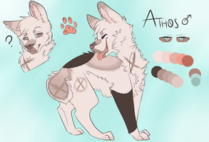 Athos Ref 2013 by SpectralCoyote
