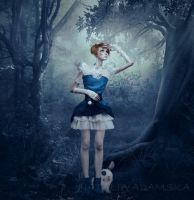 Alice in Wonderland by VillyBilly