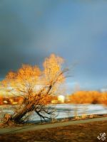 Time Rushes By by greyorm