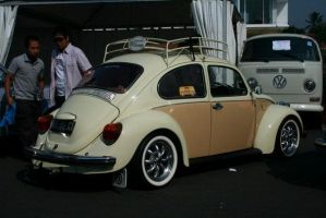 Two Tone Beetle 01 by atot806