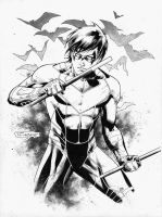Nightwing by aethibert