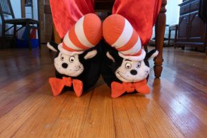 Cat in the Hat slippers, front by ExileLink