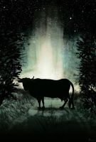 Cow In The Dark by Culpeo-Fox