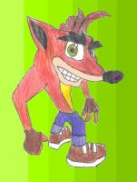 Crash Bandicoot 2 by SEBASTIEN11